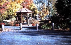 John Bator Park Fall